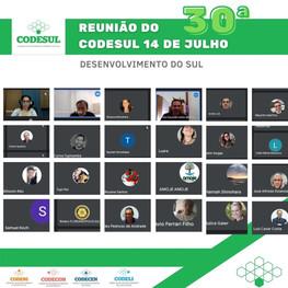 30ª reunião do Conselho de Desenvolvimento do Sul