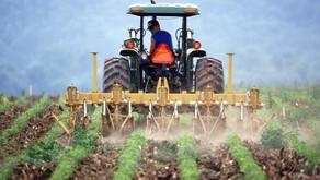 WEBINAR: Kje v kmetijstvu so priložnosti za razvoj
