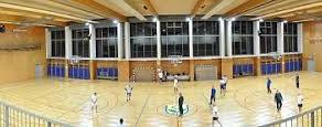 Delo v športni dvorani Dobrova