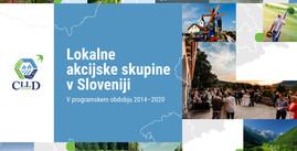 Lokalne akcijske skupine v Sloveniji
