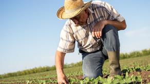 Vprašalnik o obremenitvah na kmetiji