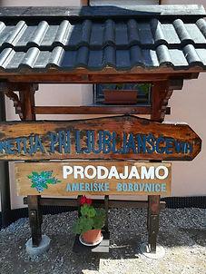 Kmetija pri Ljubljanscevih1.jpg