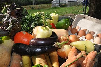 Kmetija Na svoji zemlji.jpg