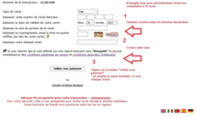 paiement carte bancaire bluepaid étape2