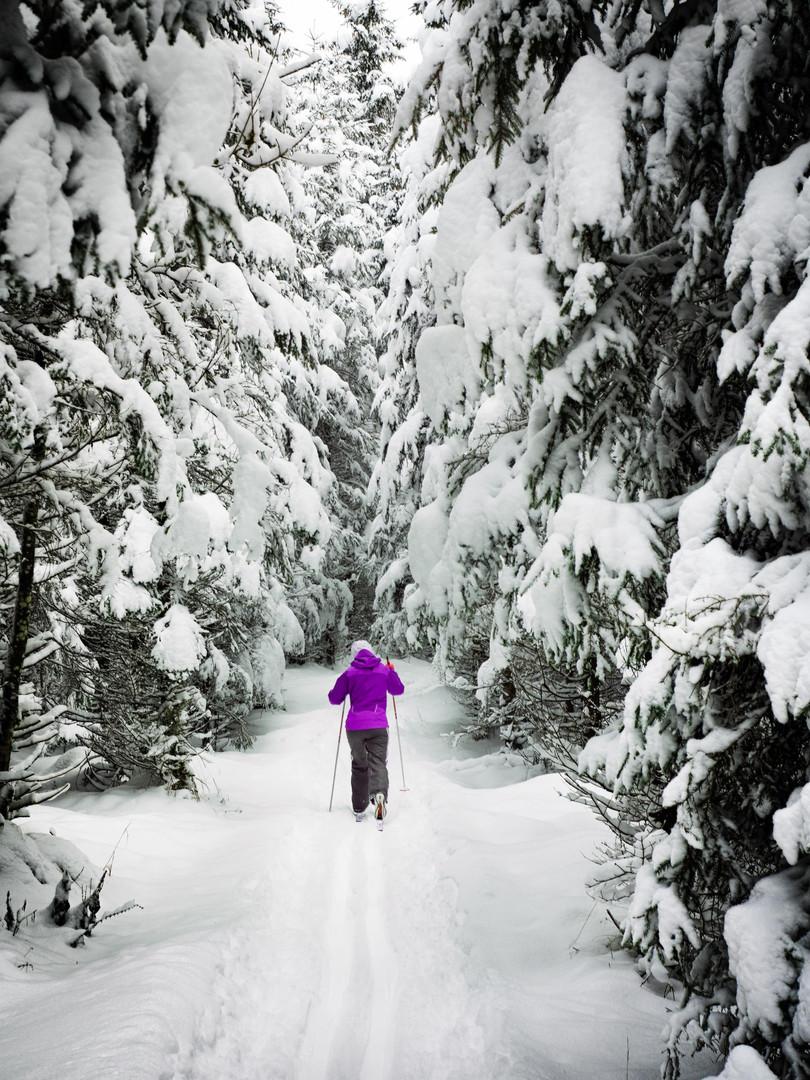 ski-simon-matzinger-unsplash.jpg