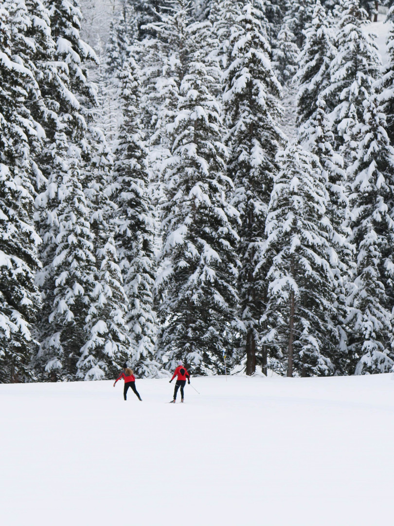 ski-fond-foret-nils-rasmusson-unsplash.j