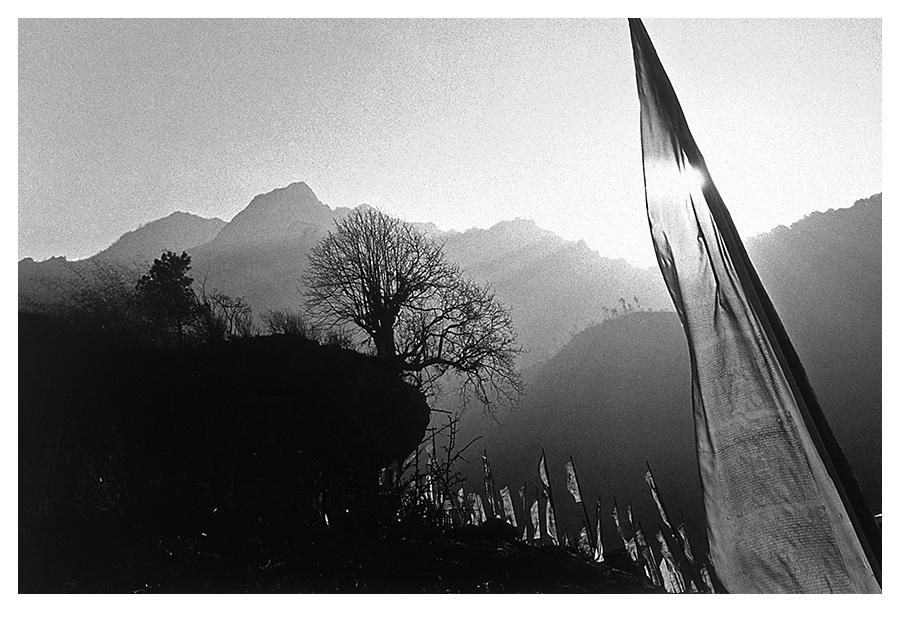 Nepal Treking