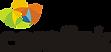 Carelink_logomarca-final.png