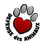 logo_webshare_lvda.jpg