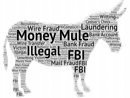 The Use of Online Money Mules in Money Laundering Schemes