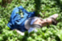 Bärlauch-Ernte