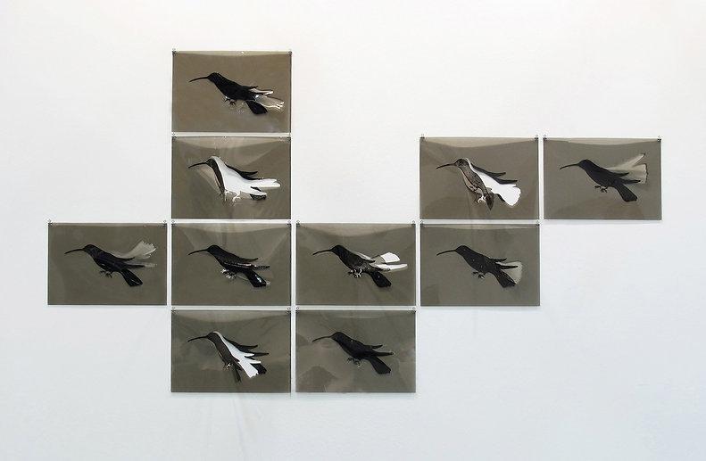 dieci_esercizi_di_aderenza_(il_colibrì