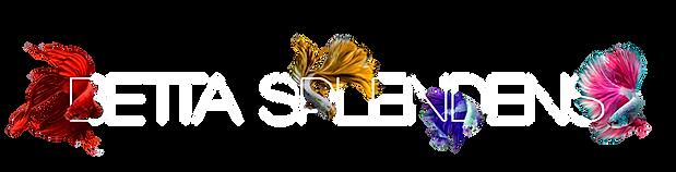Logo Betta.png