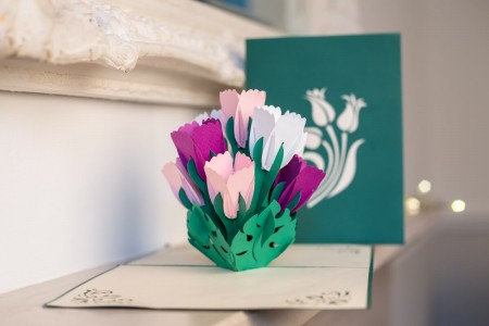 Cardology Tulips greetings card