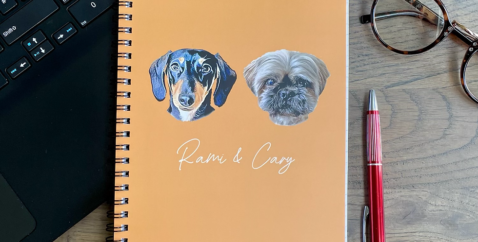 The Headshot Notebook