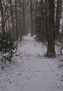 Minicamping het Hijkerveld in Winter