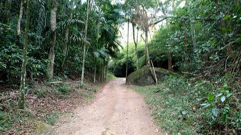 Caminhada1.jpg