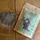 Thumbnail: Compost Tea