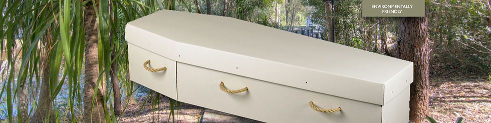 Cremation-cheap-price-hospital-viewing-coffin-cardboard-funeral.jpg