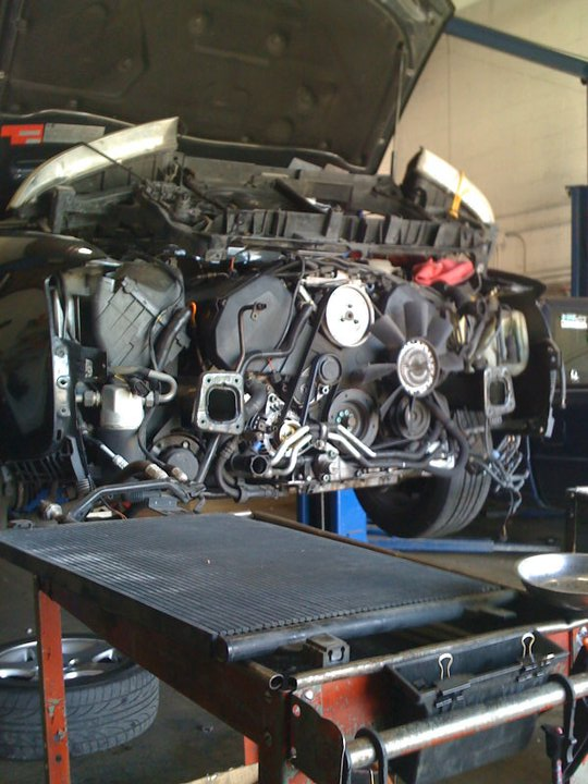 Mangale Motors - Hayward, CA