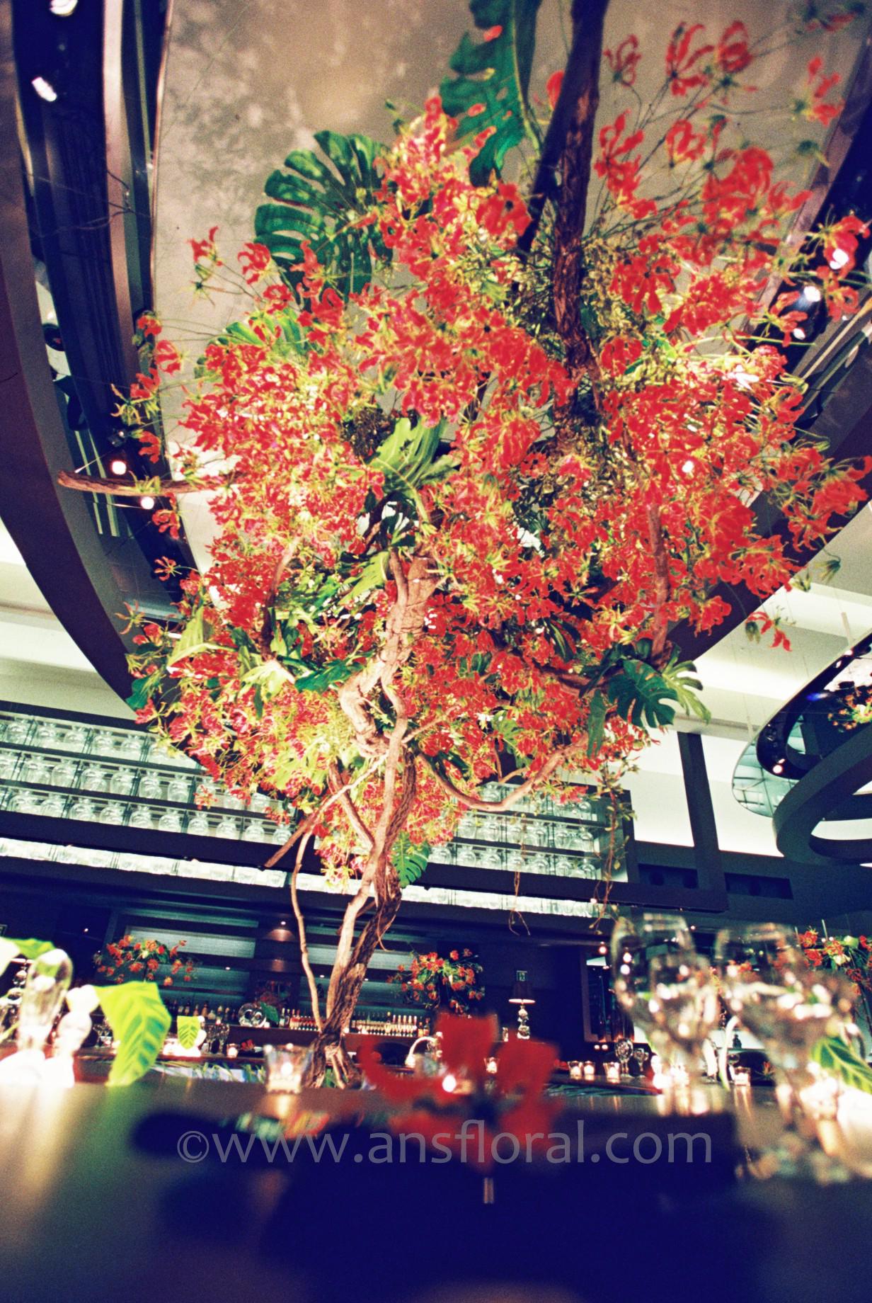 赤の大木2