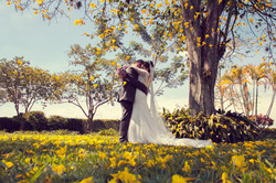 Fotografo de bodas en sevillla