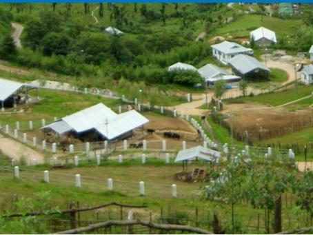 Visit to the National Research Center on Yak, in Dirang, Arunachal Pradesh, India