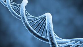 Answers About Yak Genetics