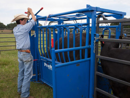Selecting a Working Chute