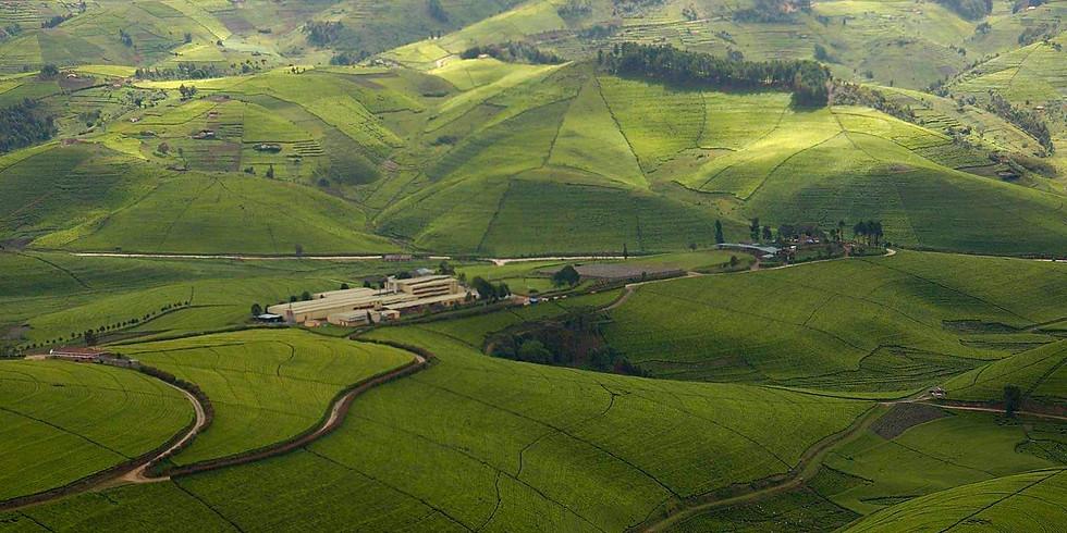 6 Day In The Splendid Rwanda