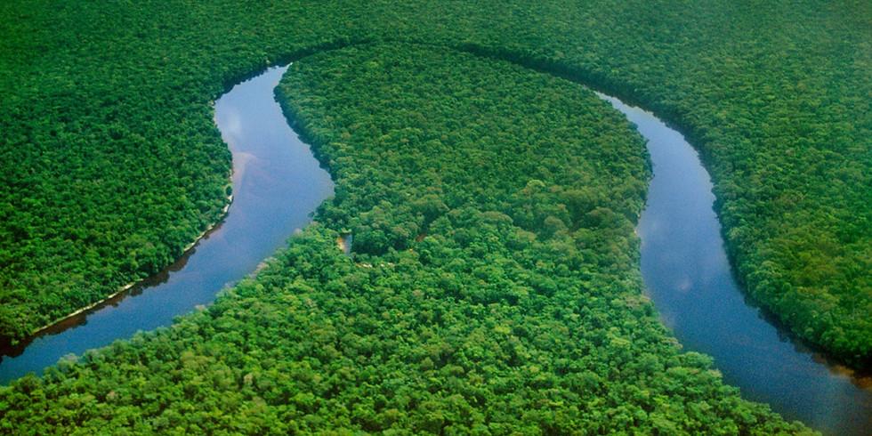 10 Day Congo River and Virunga Tour