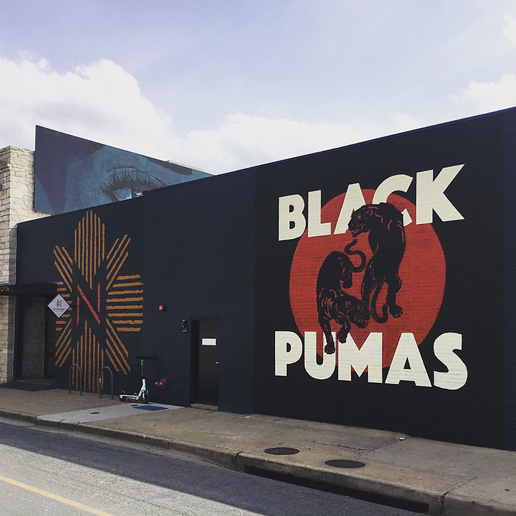 blackpumas.png