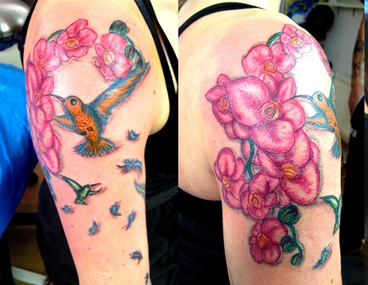 orchids-birds