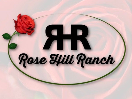 Rose Hill Ranch - A Small Town Woman Chasing A Big Dream