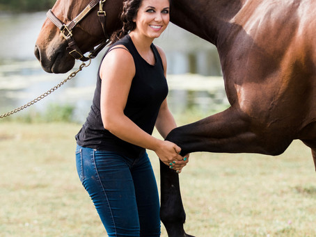 Benefits of Chiropractic Care for Equine Athletes