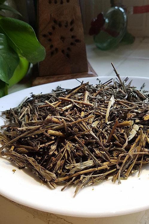 Pericon ( Tagetes lucida )