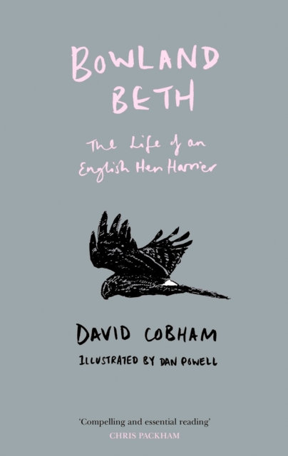 Bowland Beth : The Life of an English Hen Harrier