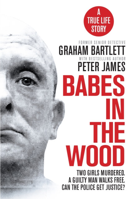 Babes in the Wood : Two girls murdered. A guilty man walks free.