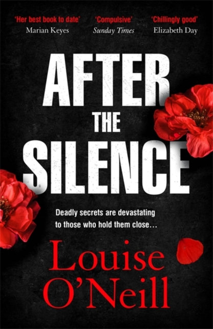 After the Silence : The An Post Irish Crime Novel of the Year
