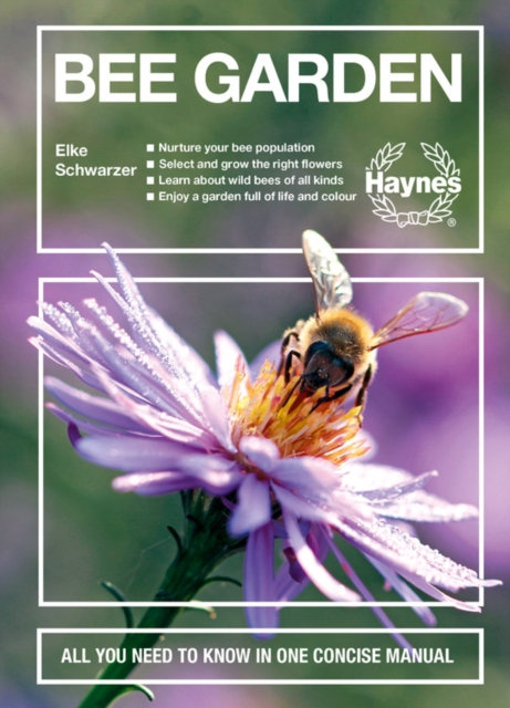 Bee Garden : All you need to know in one concise manual