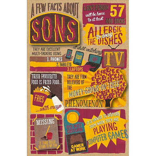 Few facts about Sons
