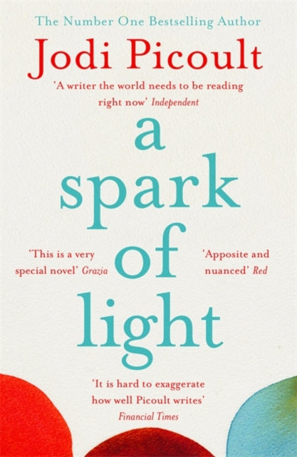A Spark of Light : from the author everyone should be reading
