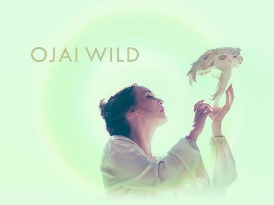 Ojai Wild