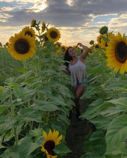 sunflower feild.jpg