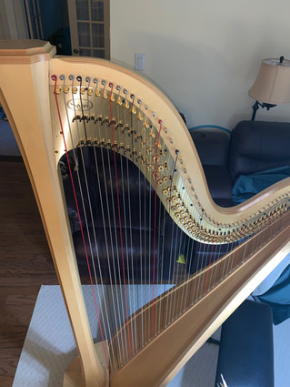 Salvi Arion SG Pedal Harp for Sale!