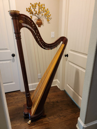 Mint Condition Lyon and Healy Prelude Lever Harp for Sale