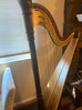 Chicago Petite Pedal harp for Sale