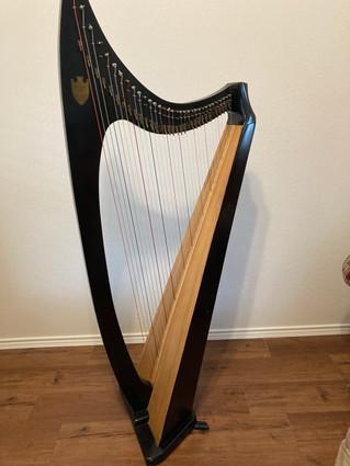 Lyon & Healy Troubadour Harp for Rent