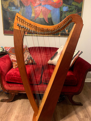 Blevins Encore 34 Lever Harp for Sale