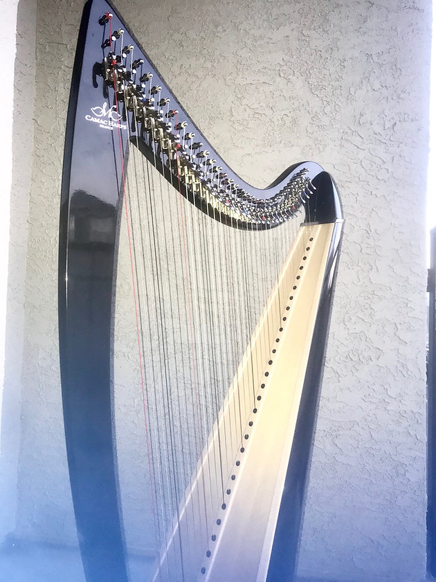 Ulysse Camac for sale! | dallas-harp-society